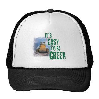Una rana con un mensaje verde. Gorras
