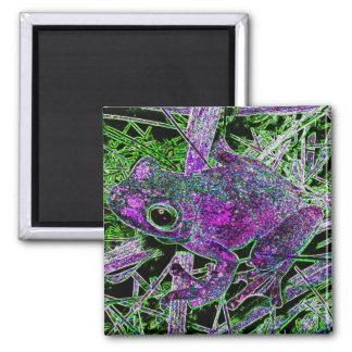 Una rana púrpura en la yarda de la corte de maravi imanes