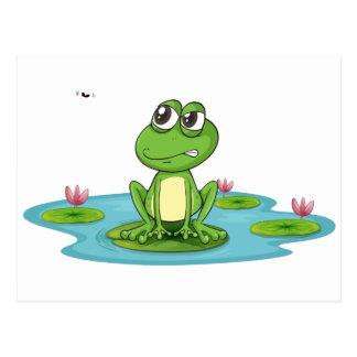 una rana y un agua postales