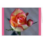 """Una Rosa"" Greeting Card"