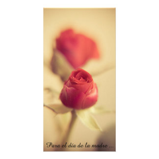 Una rosa Roja para la madre… Tarjetas Fotograficas Personalizadas