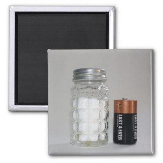 Una sal y una batería imán de nevera