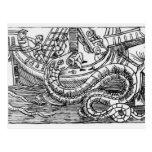 Una serpiente de mar tarjeta postal