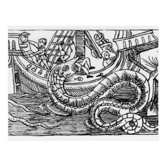 Una serpiente de mar postal
