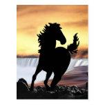 Una silueta y una cascada del caballo tarjeta postal