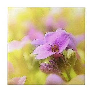 Una sola flor púrpura del berro de roca azulejo cuadrado pequeño