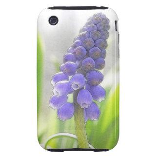 Una sola floración del jacinto de uva funda though para iPhone 3
