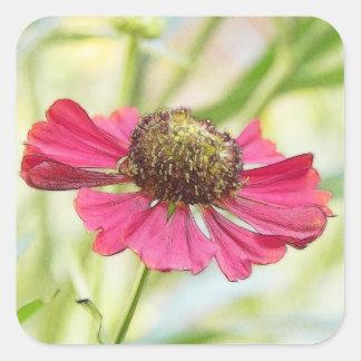 Una sola floración roja del Helenium Pegatina Cuadrada