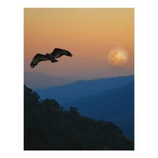 Una subida de las águilas plantillas de membrete