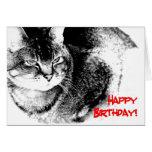Una tarjeta de cumpleaños - gato del Mitad-Birmano