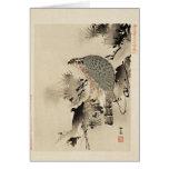 Una tarjeta de la pájaro-de-presa