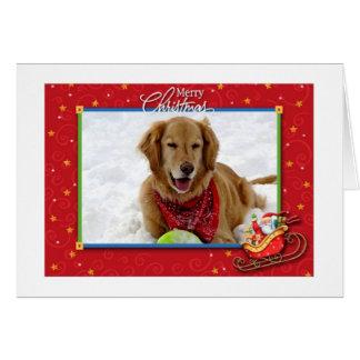 Una tarjeta de Navidad del golden retriever