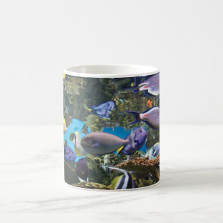 Una taza de café para los amantes de los pescados