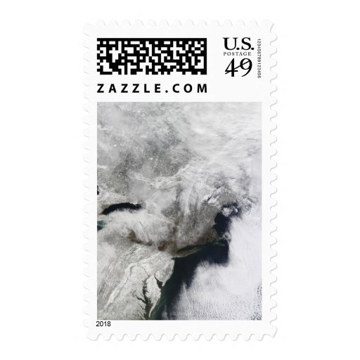 Una tormenta severa del invierno sellos