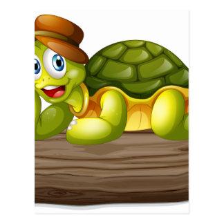 Una tortuga sobre un registro postal