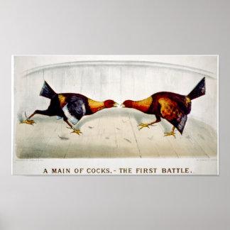 Una tubería de gallos,--la primera batalla póster