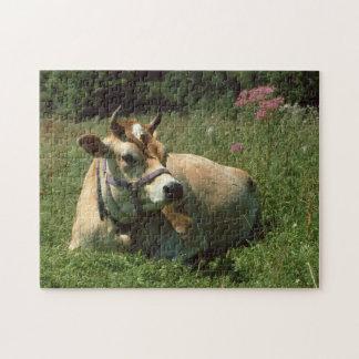 Una vaca del jersey de Brown en un rompecabezas de
