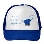 Una vez en un elefante azul gorras