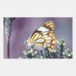 Una vida hermosa de las mariposas pegatina rectangular