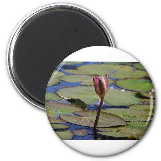Una vigilia sola imán redondo 5 cm