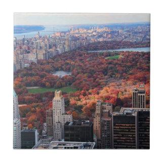 Una visión desde arriba: Otoño en el Central Park Azulejo Cuadrado Pequeño