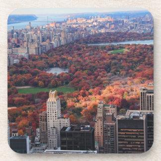 Una visión desde arriba: Otoño en el Central Park Posavaso