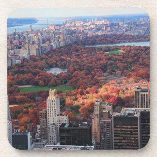Una visión desde arriba: Otoño en el Central Park Posavasos De Bebida