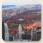 Una visión desde arriba: Otoño en el Central Park Posavasos