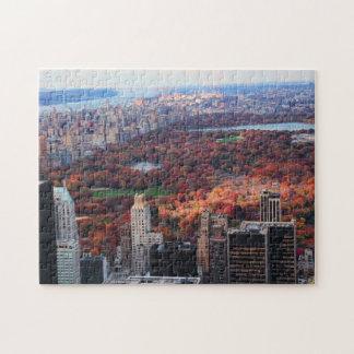 Una visión desde arriba: Otoño en el Central Park  Rompecabeza Con Fotos