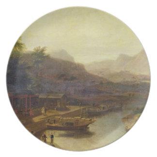 Una visión en China: Cultivación de la planta de t Platos De Comidas