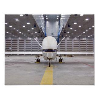 Una vista delantera de un halcón global acobardó fotografía