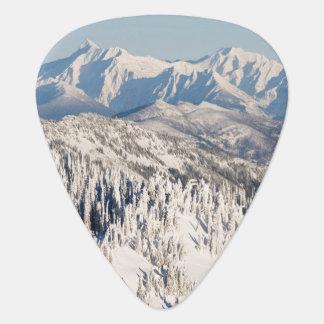 Una vista escénica de las montañas y de los árbole púa de guitarra