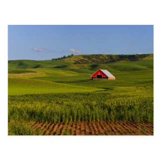 Una vista escénica de un granero en Moscú Idaho Postales