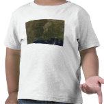 Una vista nube-libre de los Estados Unidos Camiseta