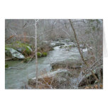 Unami Creek Feeder Stream Note Card