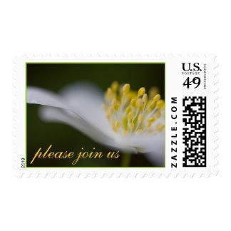 Únase a por favor nos franqueo timbres postales