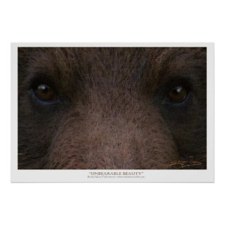 UNBEARABLE BEAUTY Grizzly Bear Art Prints Posters