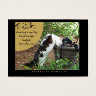 Uncertainty Life Lessons from a Cat ACEO Art Cards