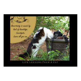 Uncertainty Life Lessons from a Cat ACEO Art Cards Business Cards