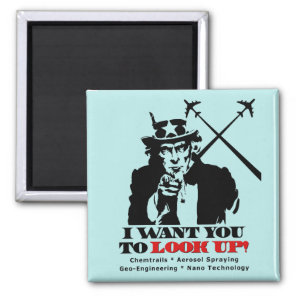 Uncle Sam says I Want You To Look Up Magnet
