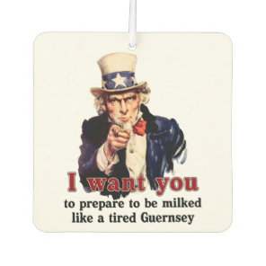 uncle Sam wants you Car Air Freshener