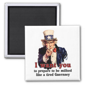 uncle Sam wants you Magnet