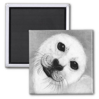 Unconditional Love Harp Seal 2 Inch Square Magnet