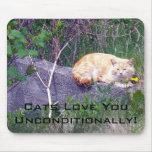 Unconditional Mousepad