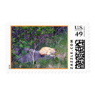 Unconditional Stamp