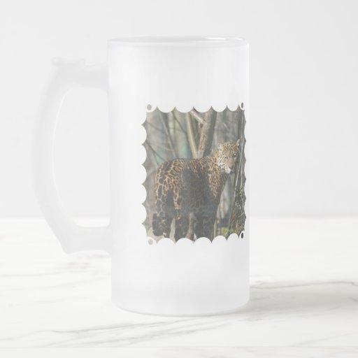 undefined 16 oz frosted glass beer mug