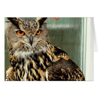 undefined greeting cards