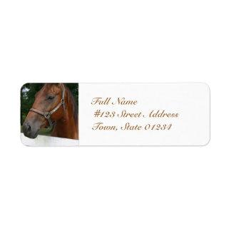 undefined custom return address label
