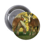 undefined pinback buttons