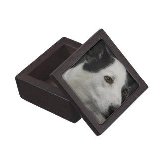 undefined premium trinket box